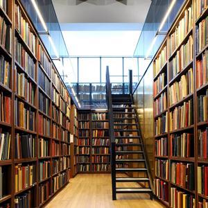 Библиотеки Александровского Завода